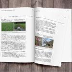bafu_publikation_1